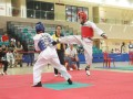 Largest-Taekwando-Competition-19