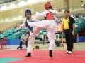 Largest-Taekwando-Competition-23