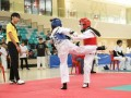 Largest-Taekwando-Competition-5