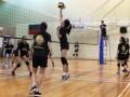 volleyball-shuqun20