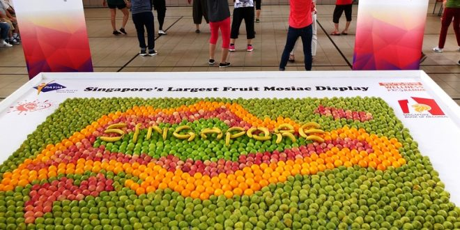 Largest Collage Made Of Fruits