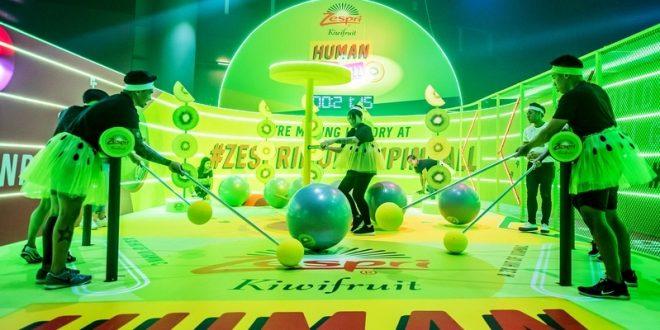 Largest Human Pinball Game