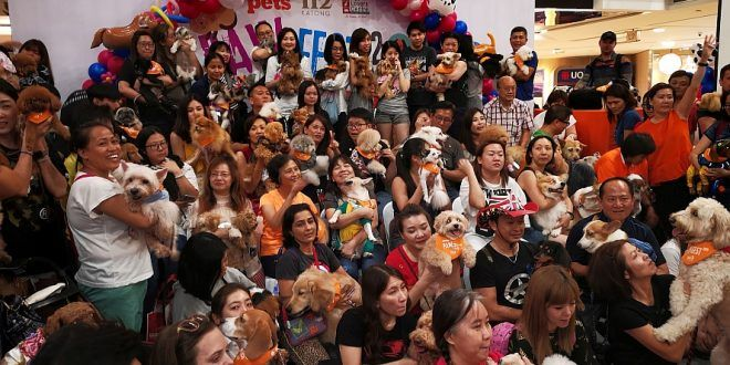Largest Gathering of Dogs Wearing Bandanas