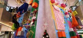 Largest Climbing Wall With Furniture Fixtures