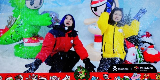 Largest Configurable Snow Playground